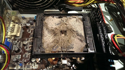 Dusty under stock AMD heat sink fan combo