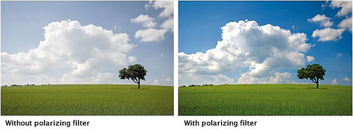 Polarizing Filter 1