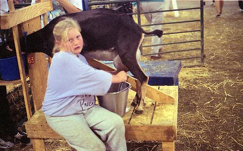 Goat milking ACFG 1995