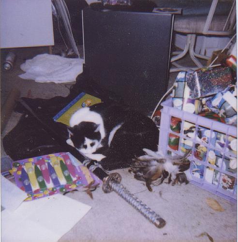 1999 - Samhain - Clutter - 11