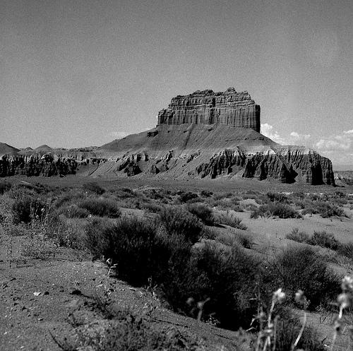 img_H501c_Utah_1992473