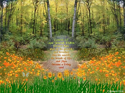 Christian Backgrounds Wallpaper - Genesis 2:7
