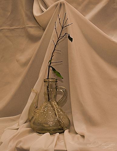 Vase with limb DSC_4775