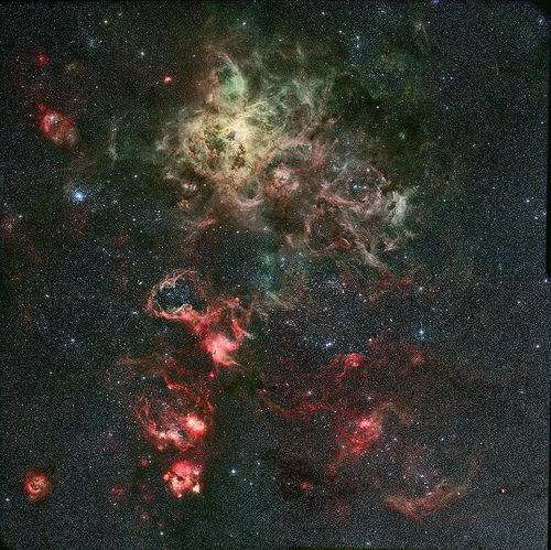 Tarantula nebula in the LMC
