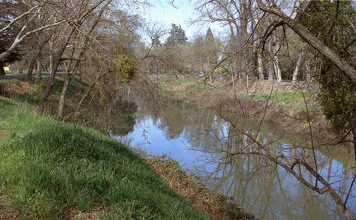 Bear Creek Mer 3-14-13 1