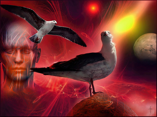 The Space Seagulls - Mystical Life - Prime World