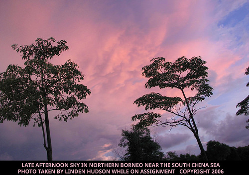 BORNEO SKY - LATE AFTERNOON